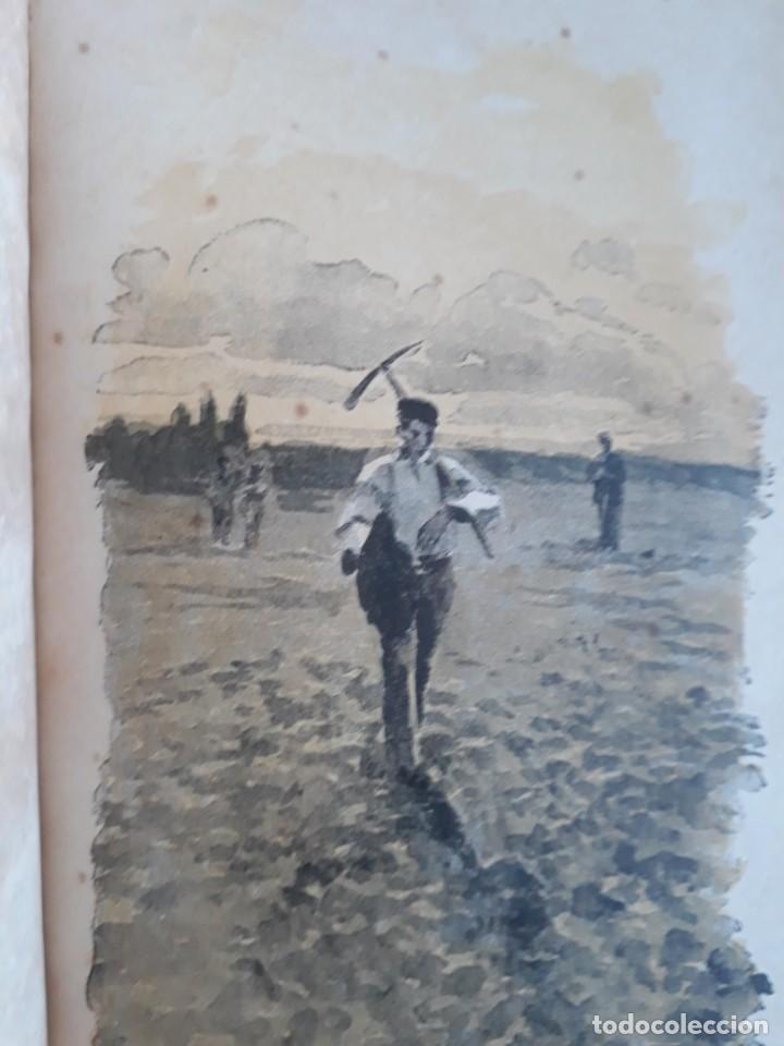 Libros antiguos: A. DAUDET 1889 HELMONT DIARIO DE UN SOLITARIO 115 grabados cromotipias. Bibl. de Macedonio Fernández - Foto 7 - 208178937