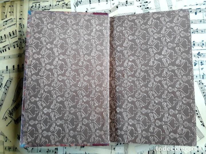 Libros antiguos: A. DAUDET 1889 HELMONT DIARIO DE UN SOLITARIO 115 grabados cromotipias. Bibl. de Macedonio Fernández - Foto 8 - 208178937