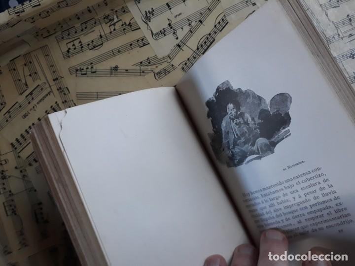 Libros antiguos: A. DAUDET 1889 HELMONT DIARIO DE UN SOLITARIO 115 grabados cromotipias. Bibl. de Macedonio Fernández - Foto 23 - 208178937