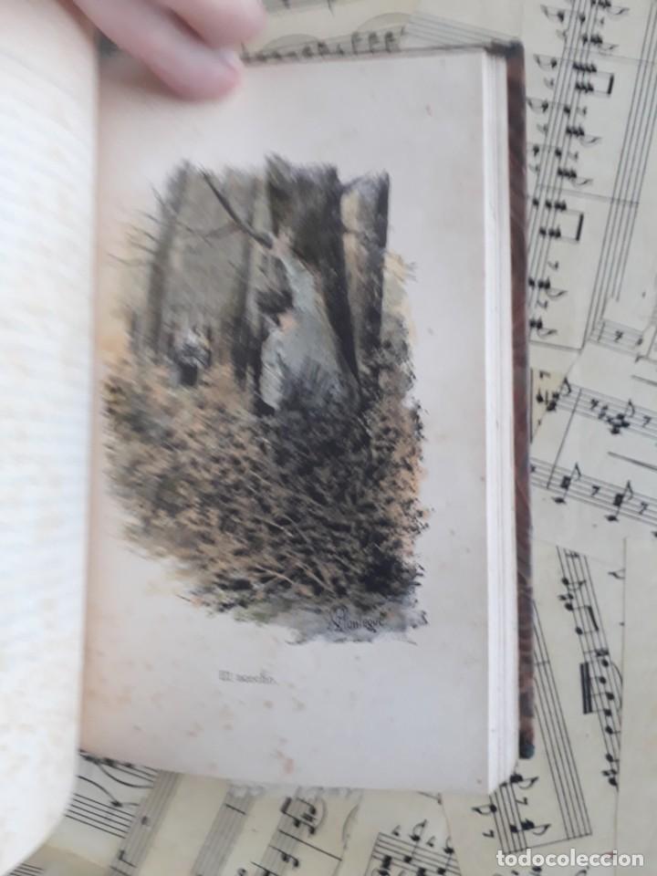Libros antiguos: A. DAUDET 1889 HELMONT DIARIO DE UN SOLITARIO 115 grabados cromotipias. Bibl. de Macedonio Fernández - Foto 25 - 208178937