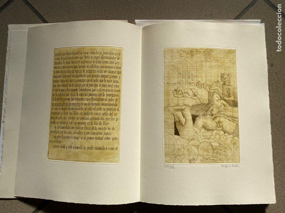 Libros antiguos: RARÍSIMA Y REPUDIADA OBRA DE CELA. ERÓTICA, AGUAFUERTES. FIRMA DE CELA Y DEL ARTISTA. VER FICHA - Foto 2 - 234465730