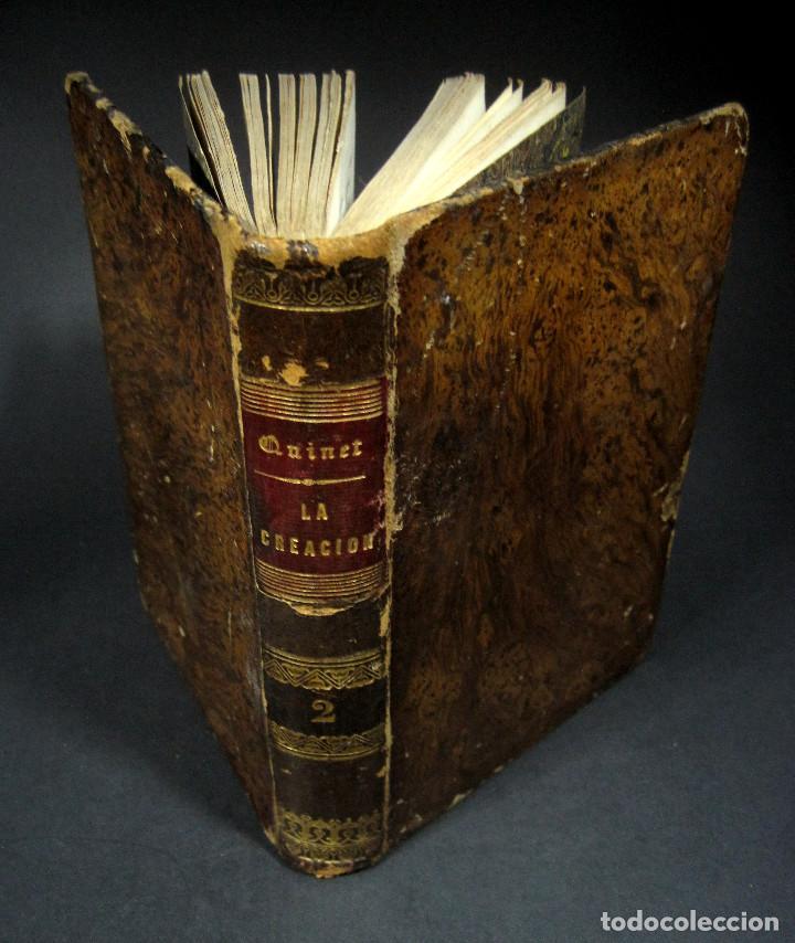 Libros antiguos: Año 1871 Antropología Filosofía Historia de la Humanidad Prehistoria Filología Quinet la Creación - Foto 9 - 123552843