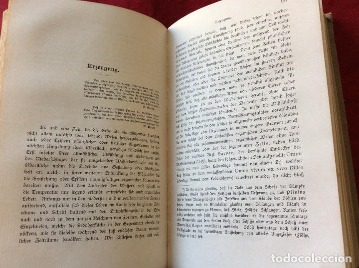 Libros antiguos: El Dr. Ludwig Büchner, Prof .: Fuerza y sustancia, 1904, 1.ª edición. Muy escaso. Envio grátis. - Foto 8 - 195065372