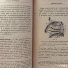 Libros antiguos: MENDES DOS REMÉDIOS. FILOSOFIA ELEMENTAR, 1916. MUY ESCASO. EN PORTUGUÉS. Lote 275933098