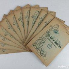 Libros antiguos: EL LOTO BLANCO - REVISTA TEOSOFICA - 1918 AÑO COMPLETO - 12 NÚMEROS - CLIMENT , FEDERICO - TEOSOFIA. Lote 288063963