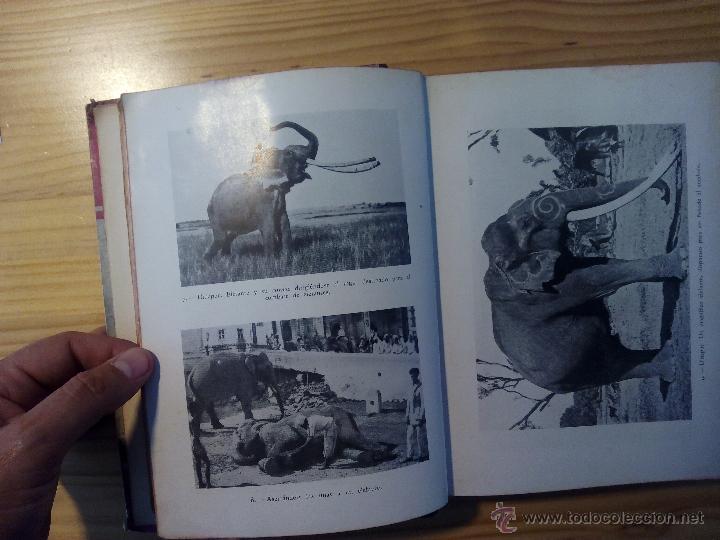Libros antiguos: LA INDIA MISTERIOSA, ROBERT CHAUVELOT, Primera edición AÑO 1929. ilustrada 155 fotografías. - Foto 2 - 51123003
