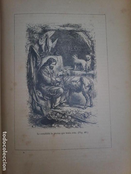 Libros antiguos: LAS AVENTURAS DE ROBINSON CRUSOE - DANIEL DE FOE - 1910 - - Foto 6 - 71398115