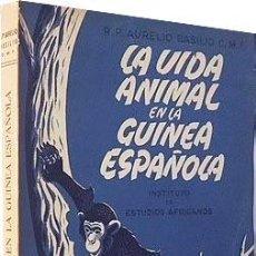 Libros antiguos: LA VIDA ANIMAL EN LA GUINEA ESPAÑOLA. (ANIMALES SALVAJES. CAZA) R. P. AURELIO BASILIO. Lote 126408147