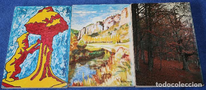 Libros antiguos: Excursiones Inéditas desde Madrid I, II y III - Roberto Fernández Peña (1980) - Foto 5 - 126479055