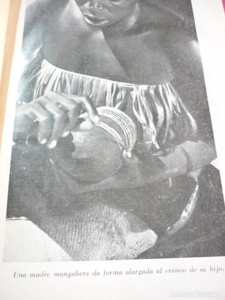 Libros antiguos: AL SUR DEL SAHARA. ATTILIO GATTI - Foto 5 - 163599442