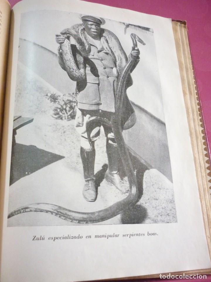 Libros antiguos: AL SUR DEL SAHARA. ATTILIO GATTI - Foto 7 - 163599442