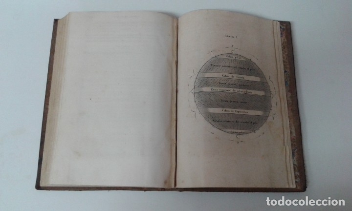 Libros antiguos: GEOGRAFIA DEL MAR MAURY ILUSTRADA CON MAPAS CORRIENTES HURACANES AÑO 1860 - Foto 6 - 181613560