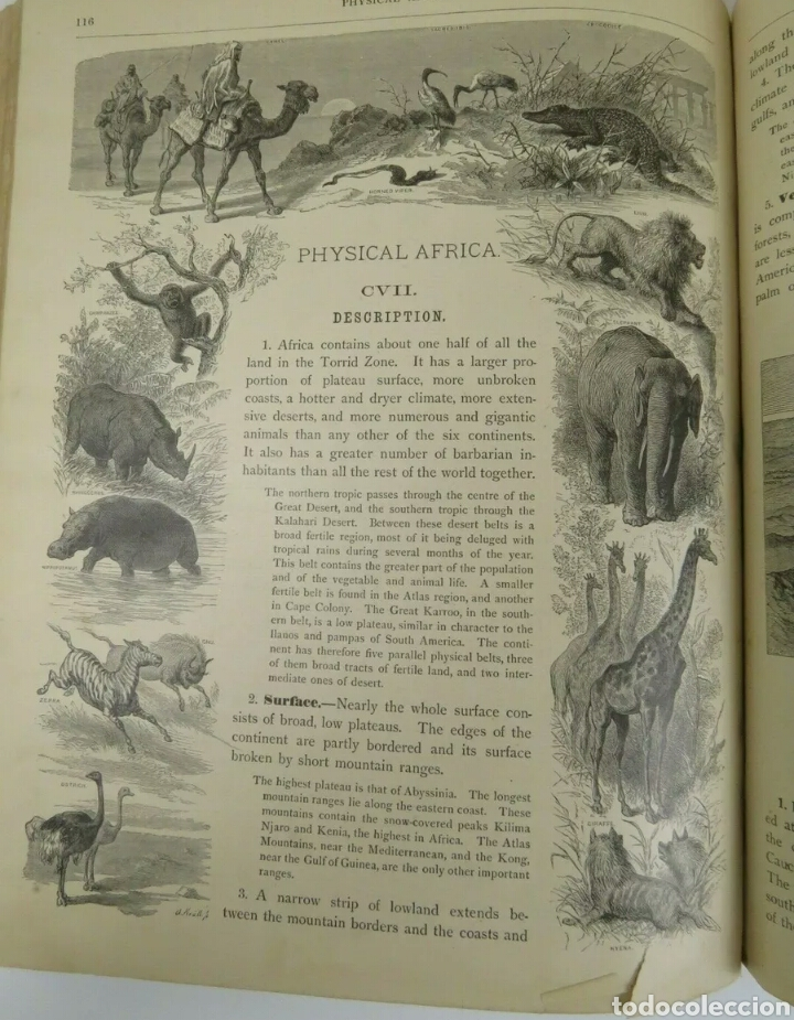 Libros antiguos: Libro muy antiguo de geografía con mapas año 1885 en inglés rareza RARO - Foto 3 - 189185765