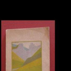 Libros antiguos: GUIA TURÍSTICA DE NAVARRA. Lote 195004247