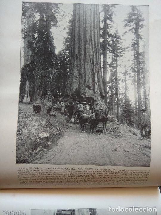 Libros antiguos: Portfolio de fotografías de las ciudades, paisajes y cuadros célebres - Año 1896 - Foto 9 - 195084135