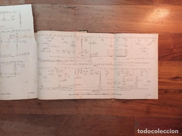 Libros antiguos: ESPLÉNDIDO ATLAS MISIONES CATÓLICAS, WERNER, LYON, 1886, 20 MAPAS Y TABLAS INGENTE INFORMACIÓN - Foto 14 - 220966268