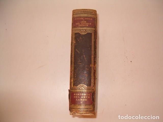 Libros antiguos: HEINRICH SCHÄFER, WALTER ANDRAE. Arte del Antiguo Oriente. RM80991. - Foto 3 - 87062488