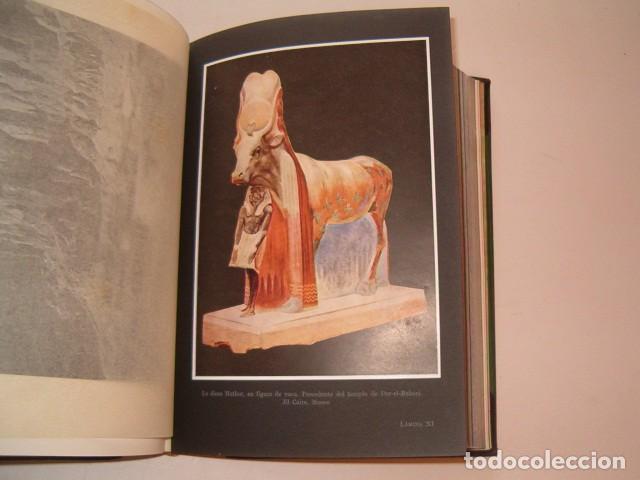 Libros antiguos: HEINRICH SCHÄFER, WALTER ANDRAE. Arte del Antiguo Oriente. RM80991. - Foto 7 - 87062488