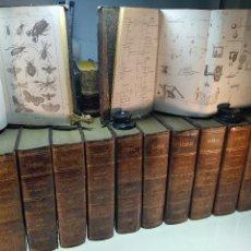 Libros antiguos: ENCICLOPEDIA MODERNA - DICCIONARIO UNIVERSAL DE AGRICULTURA, INDUSTRIA Y COMERCIO - FRANCISCO DE P.. Lote 128479151