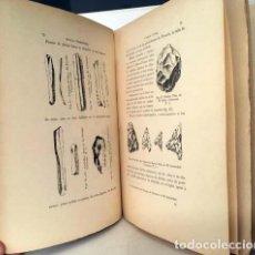 Libros antiguos: CARLOS CAÑAL : SEVILLA PREHISTÓRICA. 1894. (YACIMIENTOS EN LA PROVINCIA...CARMONA, EL CORONIL, MORÓN. Lote 137176306