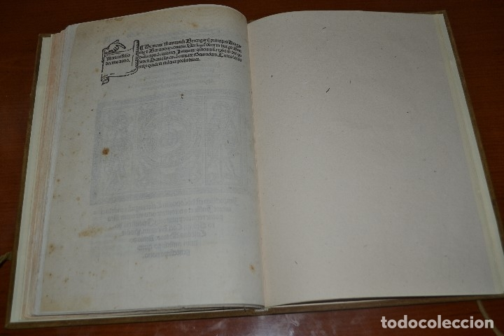 Libros antiguos: Post incunable (Zaragoza, 1509). Pandit Aragoniae veterum primordia regum... - Foto 25 - 147755606