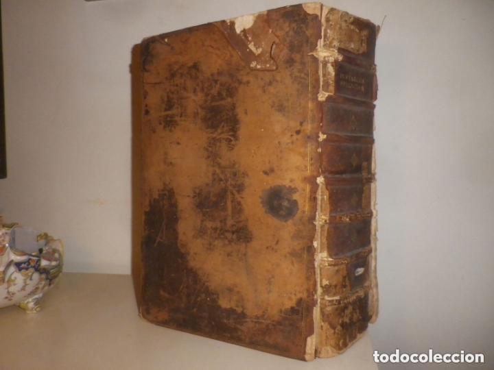 Libros antiguos: GIGANTE LIBRO : PLUTARCO - CHAERONENSIS OMNIUM QUAE EXTUM OPERUM, EN LATIN, AÑO 1624, 43X30 CMS - Foto 5 - 154114218