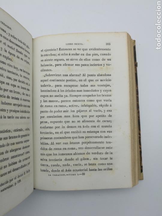 Libros antiguos: La creación de E Quintet 1871 en dos partes - Foto 6 - 155067914