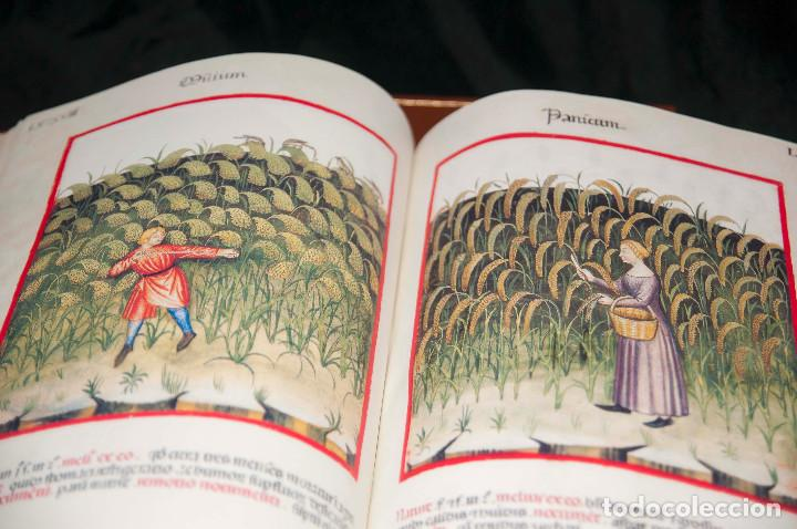 MOLEIRO - THEATRUM SANITATIS - FACSIMILE (Libros antiguos (hasta 1936), raros y curiosos - Historia Antigua)