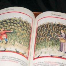 Libros antiguos: MOLEIRO - THEATRUM SANITATIS - FACSIMILE. Lote 167910560