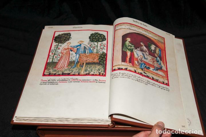 Libros antiguos: Moleiro - Theatrum Sanitatis - Facsimile - Foto 6 - 167910560
