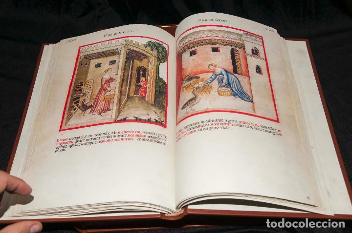 Libros antiguos: Moleiro - Theatrum Sanitatis - Facsimile - Foto 8 - 167910560