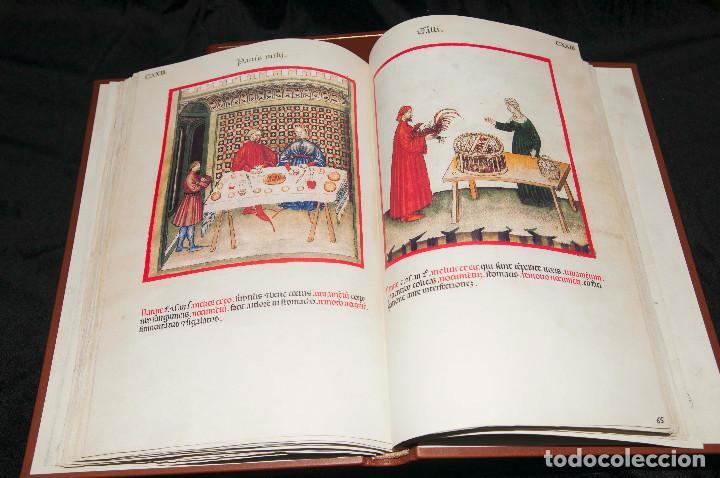 Libros antiguos: Moleiro - Theatrum Sanitatis - Facsimile - Foto 9 - 167910560