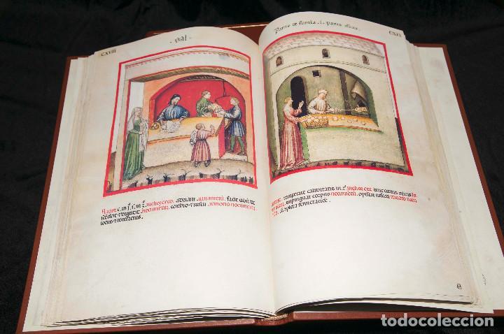 Libros antiguos: Moleiro - Theatrum Sanitatis - Facsimile - Foto 11 - 167910560