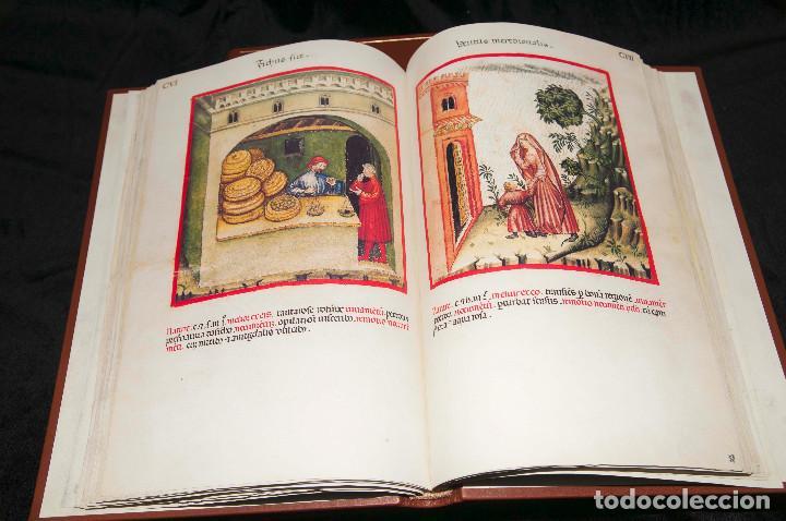 Libros antiguos: Moleiro - Theatrum Sanitatis - Facsimile - Foto 12 - 167910560
