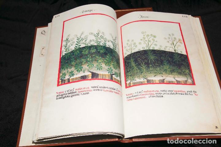 Libros antiguos: Moleiro - Theatrum Sanitatis - Facsimile - Foto 15 - 167910560