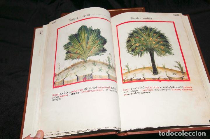 Libros antiguos: Moleiro - Theatrum Sanitatis - Facsimile - Foto 16 - 167910560