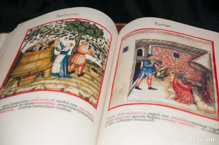 Libros antiguos: Moleiro - Theatrum Sanitatis - Facsimile - Foto 18 - 167910560