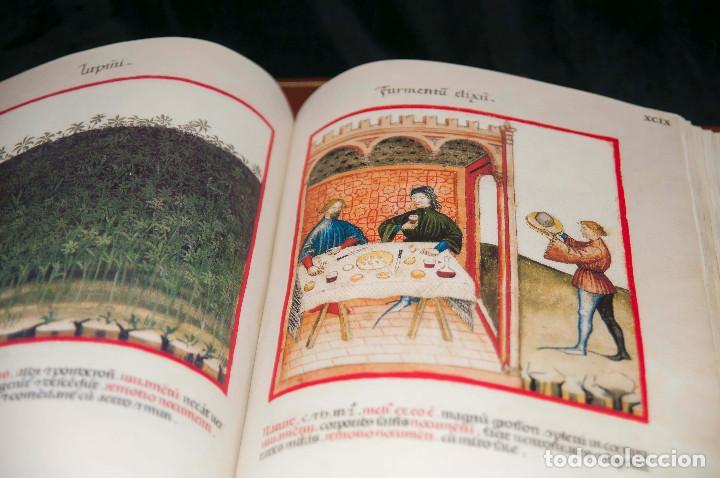 Libros antiguos: Moleiro - Theatrum Sanitatis - Facsimile - Foto 19 - 167910560