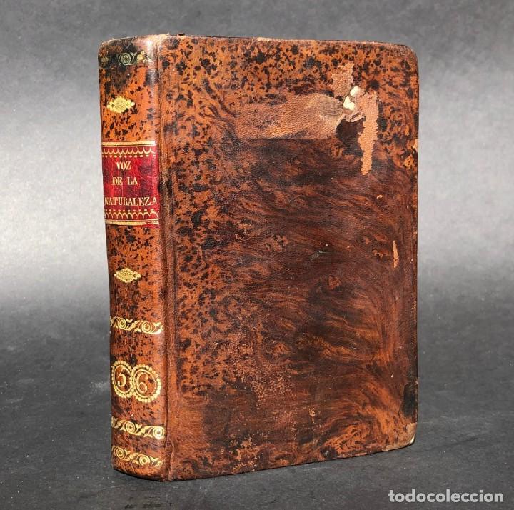 1803 VOZ DE LA NATURALEZA. MEMORIAS O ANÉCDOTAS CURIOSAS E INSTRUCTIVAS - CASTILLO DE GARCI MUÑOZ - (Libros antiguos (hasta 1936), raros y curiosos - Historia Antigua)
