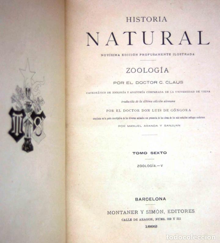 Libros antiguos: HISTORIA NATURAL. DOCTOR C. CLAUS. TOMO VI- Zoologia V. Traducción Luis de Góngora - Montaner Simón - Foto 3 - 268955024