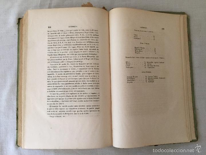 Libros antiguos: COMBATE DE TRAFALGAR, (CON PLANO) MADRID 1850, POR D.MANUEL MARLIANI - Foto 24 - 57727630
