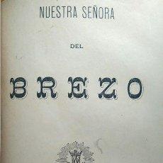 Libros antiguos: HISTORIA NUESTRA SEÑORA DEL BREZO Y SU SANTUARIO VILLAFRIA PALENCIA 1894. Lote 232596670