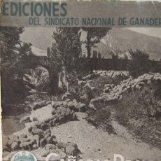 Libros antiguos: @ CAÑADA REALES @ LEONESA, SEGOVIANA, Y SORIANA @ 1954. @. Lote 175408749