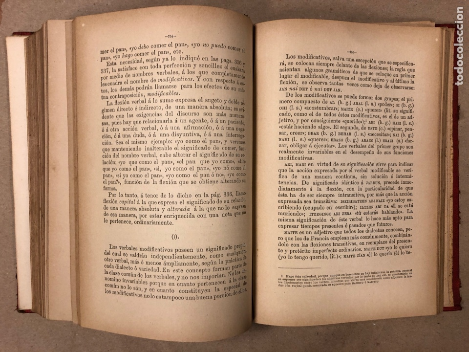 Libros antiguos: GRAMÁTICA DE LOS CUATRO DIALECTOS LITERARIOS DE LA LENGUA EUSKARA. ARTURO CAMPION. 1884 - Foto 7 - 181518563