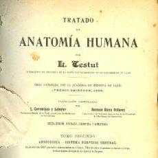 Libros antiguos: MEDICINA. TRATADO DE ANATOMIA HUMANA POR L. TESTUT. 6ªED. TOMO 2º. SALVAT EDIT.. Lote 153661562