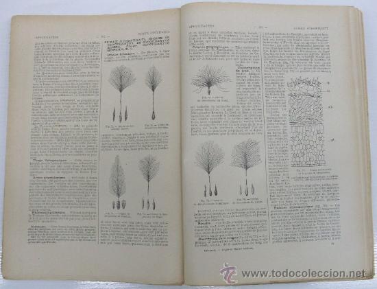 Libros antiguos: TRAITÉ DE MATIÈRE MÉDICALE. L. REUTTER. MATERIA FARMACÉUTICA VEGETAL ANIMAL. DROGAS SIMPLES. - Foto 4 - 13286686