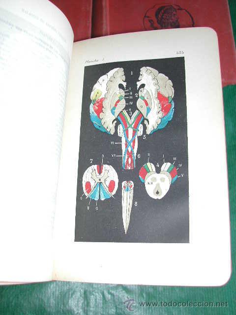 Libros antiguos: MANUEL DE PATHOLOGIE INTERNE, DE GEORGES DIEULAFOY - 1911 - Foto 5 - 237264585