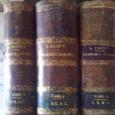 Libros antiguos: ANATOMIA HUMANA. Lote 26565381