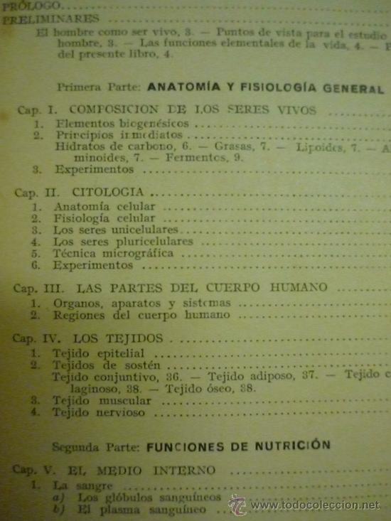 Lujoso Anatomía Y Fisiología Capítulo 2 Elaboración - Anatomía de ...