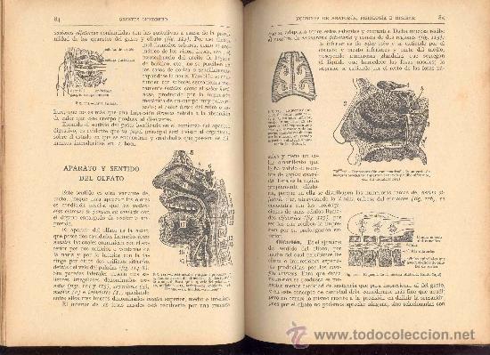 Libros antiguos: NOCIONES DE ANATOMIA, FISIOLOGIA E HIGIENE POR ORESTES CENDRERO, 5ª EDICION 1926 - Foto 2 - 29093656